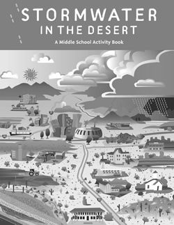 Stormwater in the Desert - Grayscale
