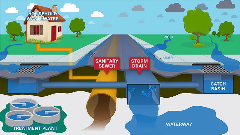 Storm Sewer vs. Sanitary Sewer diagram